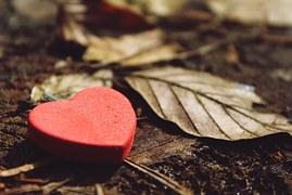 heart-1318850__180